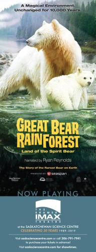 GREAT BEAR RAINFOREST Land of the Spirit Bear