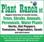 Biggest Selection of Locally Grown at Plant Ranch